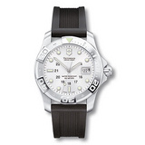 Dive Master 500M Quartz Steel (241038)