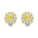 "Yellow & White Diamond ​""Starburst"" Cluster Earclips"