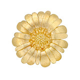 Large 18k Gold Windflower Pin