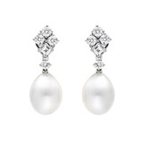 South Sea Pearl & Diamond Drop Earrings