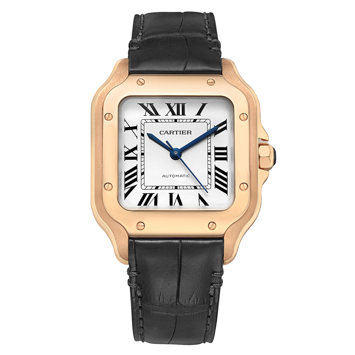 Santos Medium Rose Gold (WGSA0012)