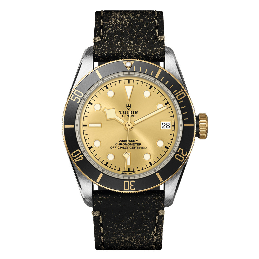 Black Bay 41 Steel & Yellow Gold (M79733N-0003)