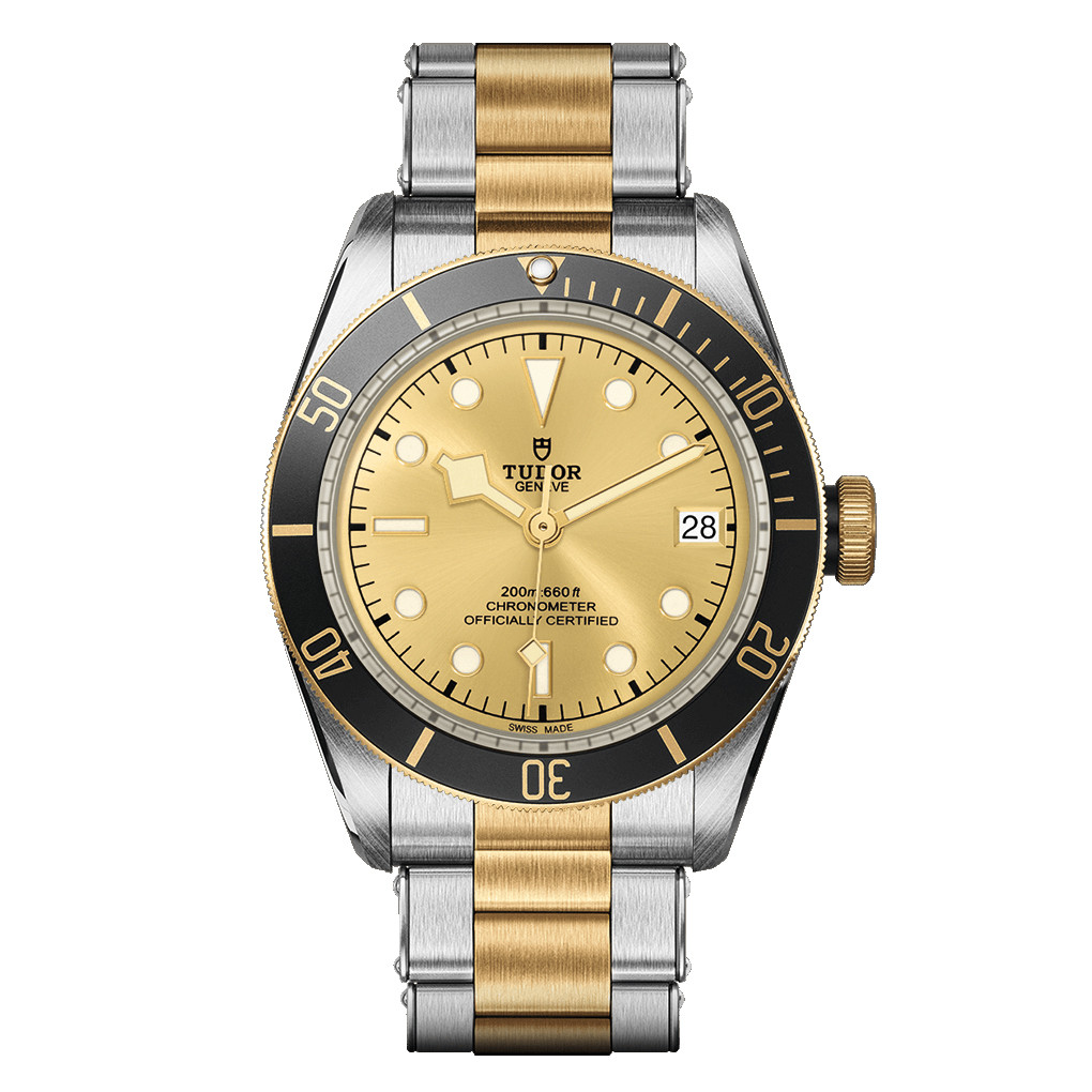 Black Bay 41 Steel & Yellow Gold (M79733N-0004)