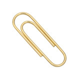 Small 14k Gold Paperclip Money Clip