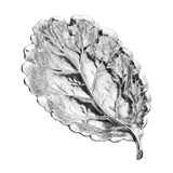 Extra Large Silver Oak Leaf Dish