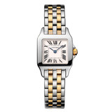Santos Demoiselle Small Steel & Yellow Gold (W25066Z6)