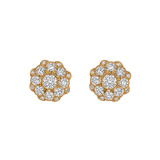 18k Yellow Gold & Diamond Cluster Earstuds